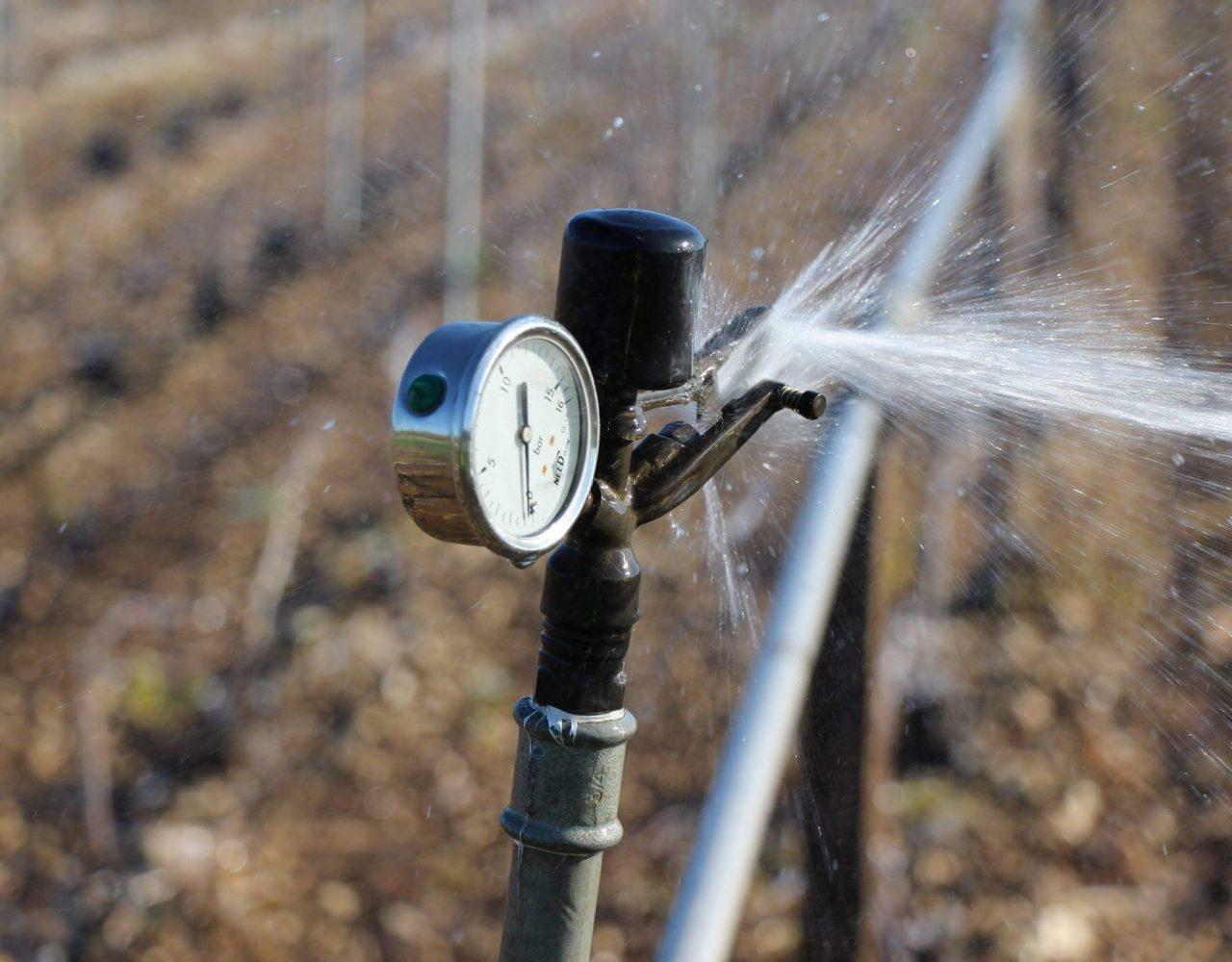 Détail manomètre système de protection des vignes du gel par aspersion